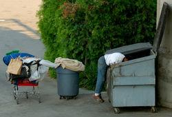 Dumpster_diver