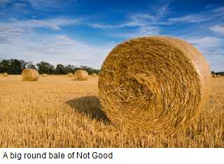 Round-bale-small