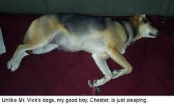 Chester_vick_post_3