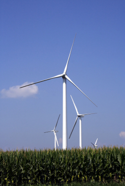 Cornfield_turbine