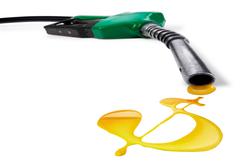 Oil_cash_2